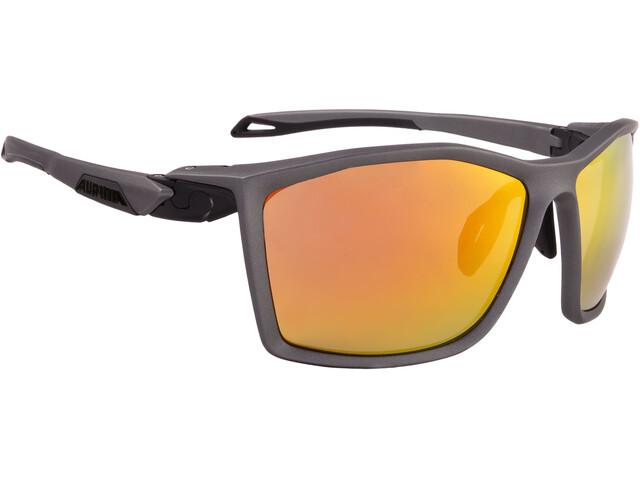 Alpina Twist Five CM+ Glasses tin matt